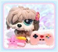 ❤️Authentic Littlest Pet Shop LPS #1816 Brown PINK Daisy Sheep Dog Sheepdog❤️