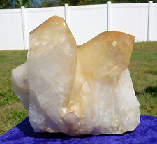 Extra LARGE LEMURIAN SEED Golden Healer Quartz Crystal Point w/ Record Keepers