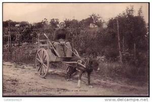 LOIRET - Jargeau - Madame Bidoux et son Attelage (de chien)