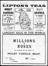 1895 - Antique Print ADVERTISING Liptons Teas Toilet Vinolia Soap  (051)