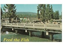 "Lake Tahoe Trout Bridge ""Feed the Fish"" Rump Row Vintage Postcard  1968"