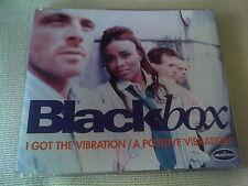 BLACK BOX - I GOT THE VIBRATION / A POSITIVE VIBRATION - HOUSE CD SINGLE