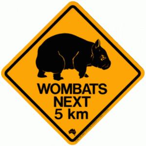 Wombat Road Sign - Magnet, 48x48mm