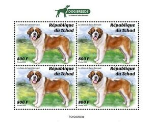 Chad Dogs Stamps 2020 MNH St Saint Bernard Dog Breeds Domestic Animals 4v M/S