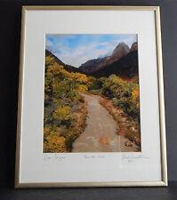 "Zion Canyon framed/matted color photo Ben Bernstein? November 2004 6/10, 8"" X10"""