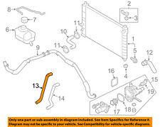 GM OEM Radiator-Heater Hose 95214144