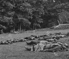 Confederate Dead Soldiers Gettysburg Rose Woods 1863 New 8x10 US Civil War Photo