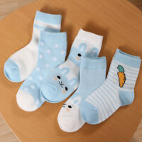 KQ_ 5 Pairs Baby Summer Cartoon Cotton Mesh Breathable Middle Tube Socks Charm