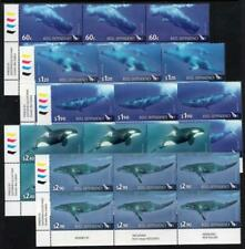 ROSS DEPENDENCY MNH 2010 Whales Blocks of 6