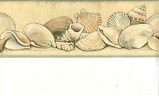 MANY DIFFERENT TYPES OF SEA SHELLS ON SHELF GREEN TRIM  WALLPAPER BORDER