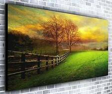 Walk in the Meadow Wall Décor Panoramic Canvas Wall Art Print Framed XXL 55 inch