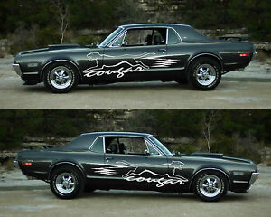 Huge Mirrored Cougar Set, Truck, Ute, Car, Boat, Caravan Sticker Decals