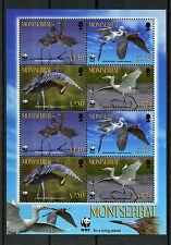 Montserrat 2010 MNH Reddish Egret WWF 8v M/S Birds