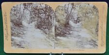 Antique Stereoview Card - 19 - Lover's Retreat - Keystone