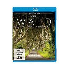 2 Blu Ray ein Herbstgedicht und der Wald