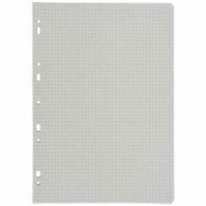 100 FEUILLES, 200 pages A4 petits carreaux (5x5 mm) perforées - 21x29,7 - NEUF