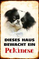 Hund Pekinese bewacht Haus Blechschild Schild gewölbt Metal Tin Sign 20 x 30 cm