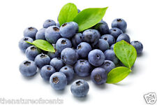 Blueberry 2 Oz Fragrance Oils Free Shipping
