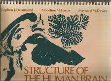 STRUCTURE OF THE HUMAN BRAIN Photographic Atlas by DeArmond - Fusco & Dewey 1989