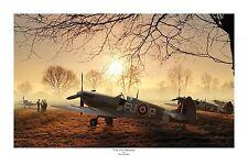 """WWII WW2 RAAF RAF Supermarine Spitfire Aviation Art Photo Print - 12"""" X 18"""""""