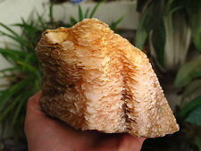 1300g NATURAL CLEAR yellow CALCITE Scales CRYSTAL cluster Specim #A72