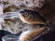 """SALMO DISCONTINUED OLD RED BOX 2 1/2"""" Boxer BX7SDR-RR in Real Roach Deep Lure"""