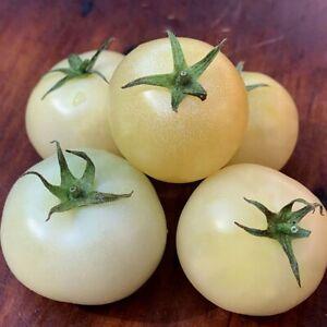 White Tomato Seeds Gardening Plants Tasty Vegetable Seeds UK STOCK