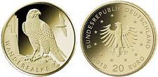 20 Euro Goldmünze 2019 Heimische Vögel Wanderfalke Prägestätte Stuttgart F