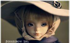 Scarecrow Hal boy DollZone 1/4 size MSD bjd doll 45cm