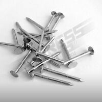 100x Stahlstifte 2,0 x 25mm Stahl Bilder Nägel gebläut Messing platiertem Kopf