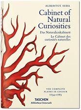 Albertus Seba's Cabinet Of Natural Curiosities Musch  Irmgard 9783836554374