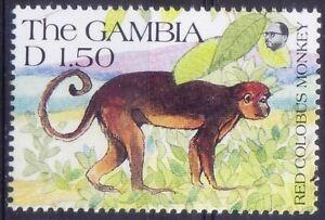 Gambia 1991 MNH, Red Colobus Monkey, Wild Animals