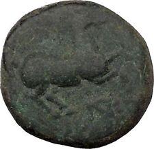 Maroneia in Thrace 400BC Original Ancient Greek Coin Horse Vine Grapes  i37008