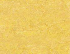 Ziro Linoleum Fußboden Amarillo Klick Parkett Fertigfußboden Linoleumboden
