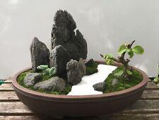Bonsai Rock Mountain Penjing Rock Aquarium Rock Mountain Aquascaping Rock Stone
