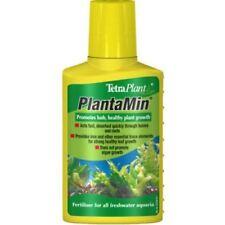 Tropical Live Aquarium Plants For Sale Ebay