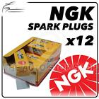 12x NGK SPARK PLUGS Part Number BMR6A Stock No. 7421 New Genuine NGK SPARKPLUGS