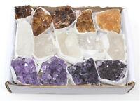 Bulk Citrine Amethyst Clear Quartz Crystal Clusters: 9-14 Piece Lot