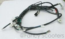 X-19  Super Pocket bike with front/Rear Turn signal Wire harness (After Market)