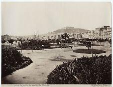 Italie Naples Napoli  Photo Amodio Vintage albumine ca 1875