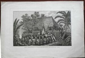 Captain Cook Hawaii Natives Meeting Ceremony Offerings 1785 engraved print