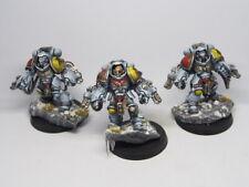 Warhammer 40000 Space Lobos Marines Espaciales Primaris agresores Pro Pintado