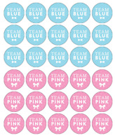 30 X Gender Reveal Cupcake Toppers Edible Wafer Paper Fairy Cake Topper