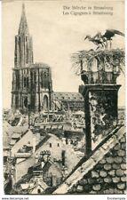 CPA - Carte postale - France -- Strasbourg - Les Cigognes à Strasbourg (CPV799)