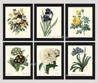 Unframed Botanical Print Set of 6 Antique Blue White Garden Home Decor Wall Art