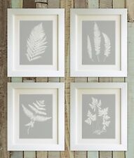 "SET OF 4 Fern Prints, 5""x7"" UNFRAMED, Dove Grey Botanical Plants, Picture Gift"