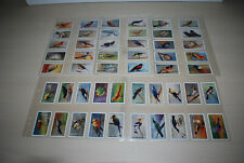 More details for gallaher 1928 original cigarette cards zoo tropical birds first series full set