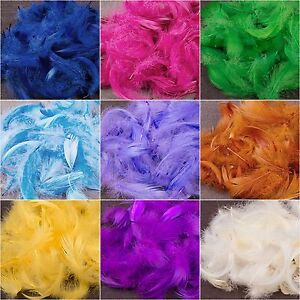 Soft Small 25 x Feathers Arts Crafts Scrapbooking Card Making Embellishments
