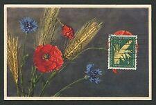 Onu ny Mk 1954 flora cereales grano flor maximum mapa maximum card mc cm d2474