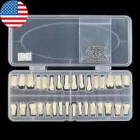 USA Dental Replacement 32PC Teeth Model Typodont Screw-in Frasaco AG3 Compatible